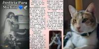 La dueña cuenta que el gatito llegó a su vida de una manera inesperada, pero que una noche del 6 de mayo se le fue arrebatado.