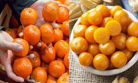 Estos alimentos ayudan a prevenir las enfermedades respiratorias.