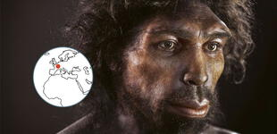 La evolución del hombre: el Homo Sapiens