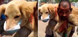 Hombre se quitó la única mascarilla que tenía para dársela a su perrito y protegerlo del COVID-19 [VIDEO]