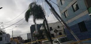 Lince: poste de telefonía a punto de colapsar pone en peligro a vecinos