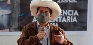 """Castillo ante la OEA: """"No somos comunistas, no venimos a expropiar, ni ahuyentar a nadie"""""""