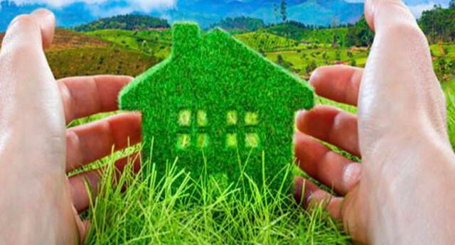 Cuidar el medio ambiente es un valor importante que se aprende desde casa