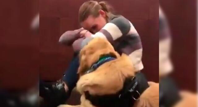 Video viral en Facebook, muestra cómo el amor de un perro por su dueño puede conmover a miles