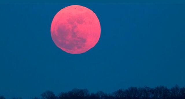 Sigue EN VIVO la Superluna rosada, evento que será visto HOY en todo el mundo