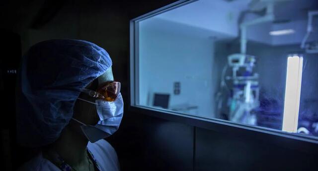 El estudio fue realizado por científicos de la Universidad de Boston, en Estados Unidos.