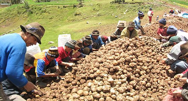 Martín Vizcarra agradece al sector agrícola