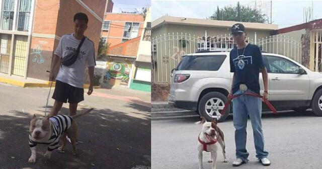 Un joven tuvo una simpática respuesta para defender a su perro pitbull de las personas que dicen que es agresivo. La historia se volvió viral en Facebook.