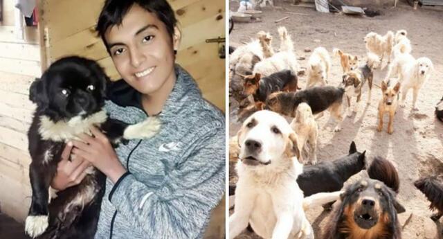 El fallecimiento de Edwin Ramírez ha conmovido a miles de internautas en Facebook que ahora piden apoyo para alimentar a los perros de su albergue en Puente Piedra.