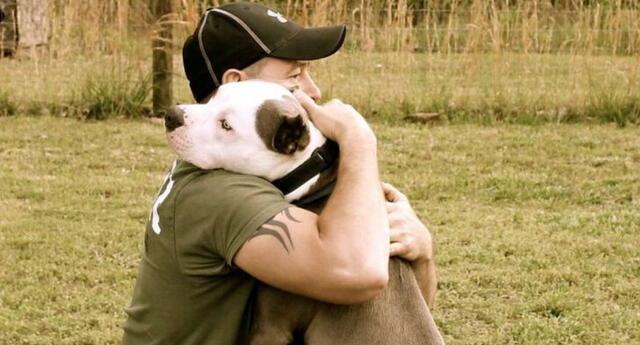 Dueño del cachorro se volvió viral en Facebook debido a la hilarante respuesta que tuvo con los vecinos de su distrito que por temor al pitbull se alejaron de él.
