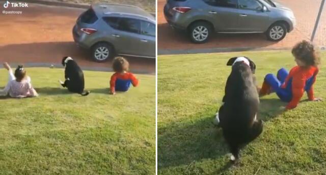 Niños y su perro enamoran a miles en TikTok.
