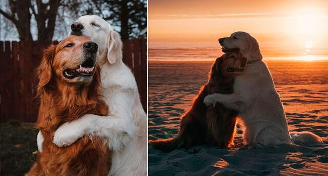 Watson y Kiko son amigos entrañables en Instagram.