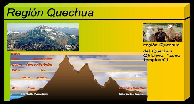 Región Quechua es la tercera región natural.