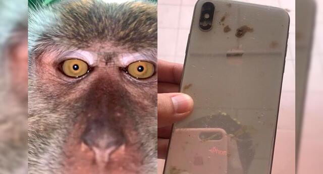 El joven encontró el móvil repleto de barro y un gran número de fotos.