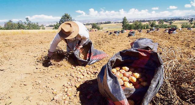 Agricultores organizan paro agrario.