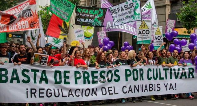 Gobierno de Argentina legaliza el autocultivo de marihuana con fines medicinales