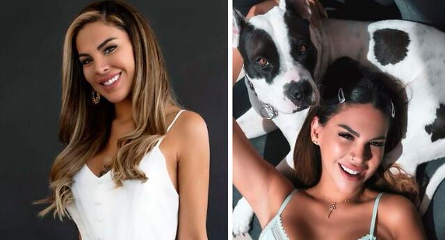 Stephanie Valenzuela rechaza la compra de mascotas.