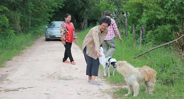 Se perdió durante un viaje y ha esperado cuatro años en el lugar donde vio a sus dueños por última vez.