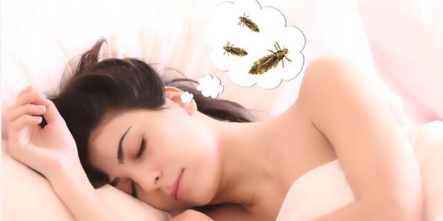 ¿Qué significa soñar con piojos y matarlos? ¿Cómo lo interpreto?