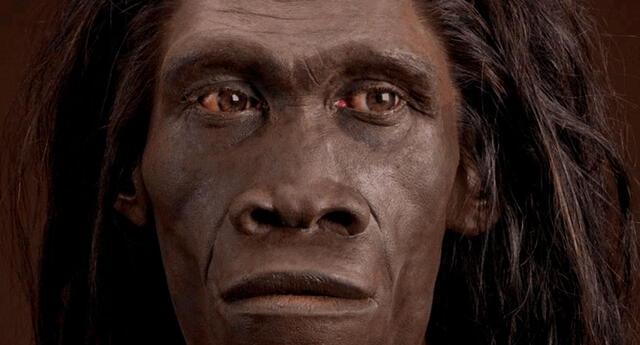 Los Homo erectus clásicos habitaron en Asia oriental.