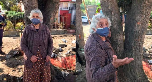 La mujer que se opuso a la tala de uno de los árboles de la zona.