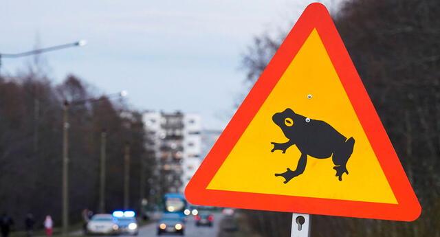 Estonia ha logrado salvar alrededor de 97.000 animales en años previos.