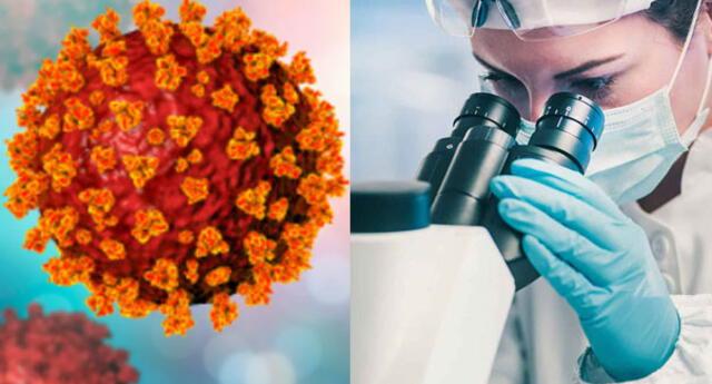 Brasil detecta nueva variante del coronavirus: está presente en el 6% de los casos de Rio de Janeiro.