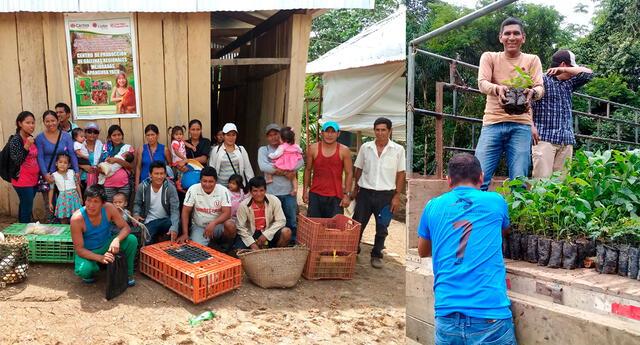 """Cáritas llevó el proyecto """"Gestión del territorio para la reducción del riesgo de desastres y adaptación al cambio climático, garantizando la soberanía alimentaria en zonas bajas de la Amazonia peruana, provincia Alto Amazonas, Loreto""""."""