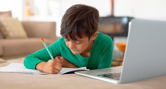 Ambas metodologías son útiles cuando los profesores y los alumnos están separados por las distancias.