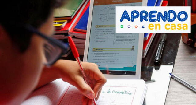 Conoce AQUÍ las clases de Aprendo en casa para hoy viernes 11 de junio para los estudiantes de inicial, primaria y secundaria.