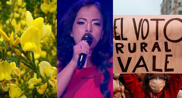 """""""¿La Voz Perú iniciando con un casting de Flor de Retama? Unos reyes verdaderamente"""", dijo un usuario de Twitter."""