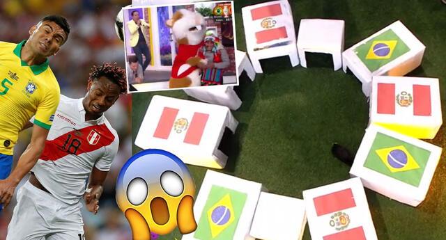 Perú y Brasil se enfrentan este jueves por la Copa América y un cuy dio su predicción.