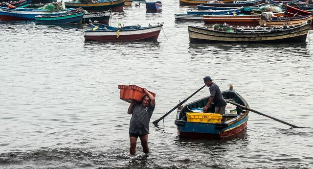 Según una investigación llevada por Ojo Público, no hay un registro de pescadores actualizados hasta el 2020.