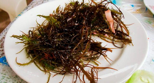 Sabías que las mujeres japonesas pre menopáusicas que consumen algas desarrollan menos cáncer de pecho que las mujeres occidentales.
