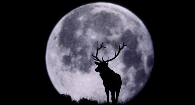 Luna llena de ciervo también es conocida como 'Luna de trueno' o 'Luna de heno'.