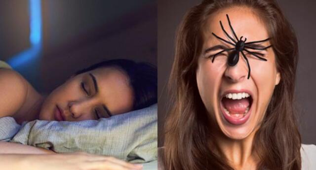 ¿Qué significa soñar con arañas y matarlas? ¿Será buen presagio?