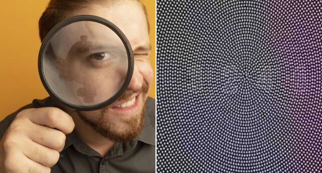 ¿Qué número se encuentra camuflado en la imagen?