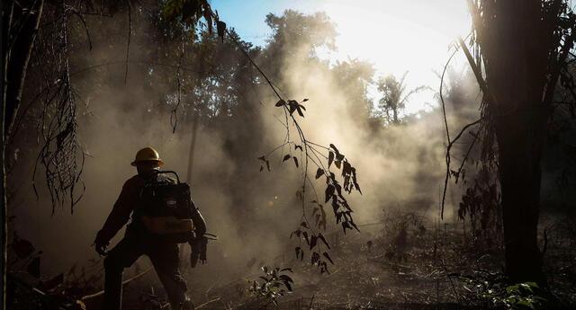 Fotografía de septiembre del 2019 que muestra a bomberos mientras participan en la extinción de un incendio en el sur del estado de Amazonas, en Brasil.