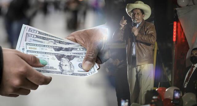 Variaciones en el dólar se estarían dando tras la proclamación de Pedro Castillo.