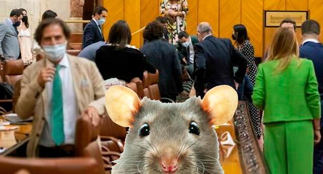 ¡Señorías, tranquilidad! Dijo la presidenta del parlamento Marta Bosquet en su intento de poner orden en la sala.