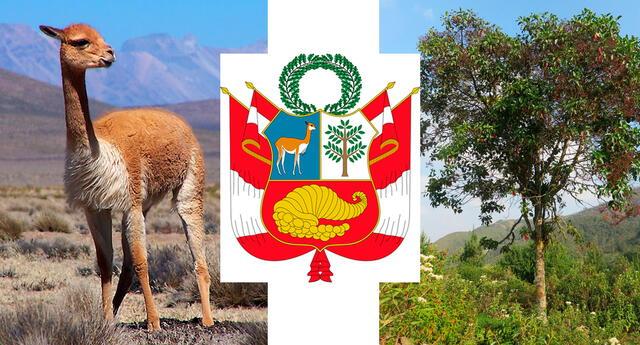 Entre los elementos del Escudo Nacional del Perú destacan la vicuña y el árbol de la quina considerados como símbolos nacionales.