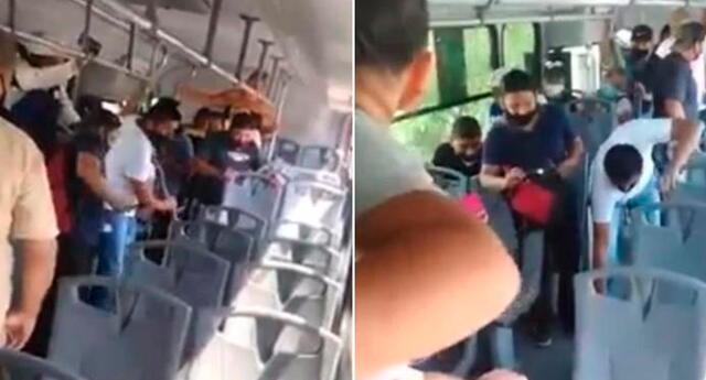 La víbora se deslizaba bajo los asientos del bus.