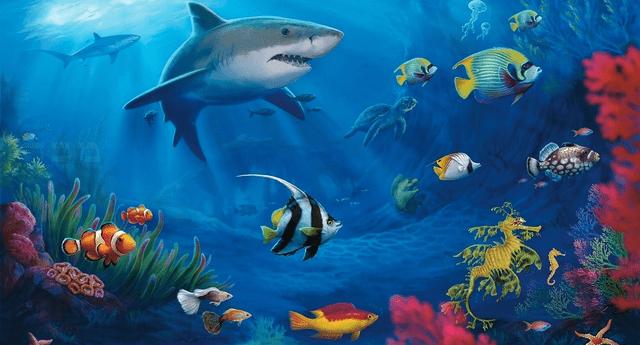 La mayoría tiene una alimentación a base de fitoplancton.