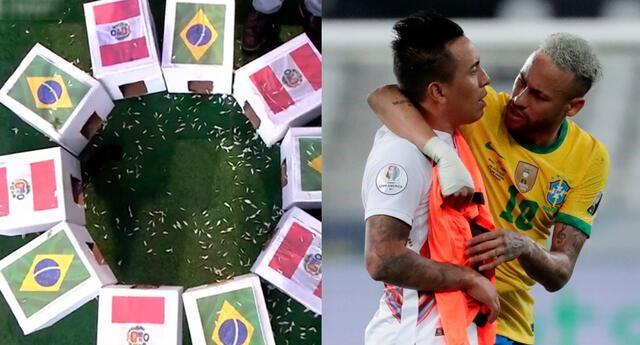 Perú y Brasil se enfrentan este jueves por las Eliminatorias Qatar 2022 y el cuy dio su predicción.