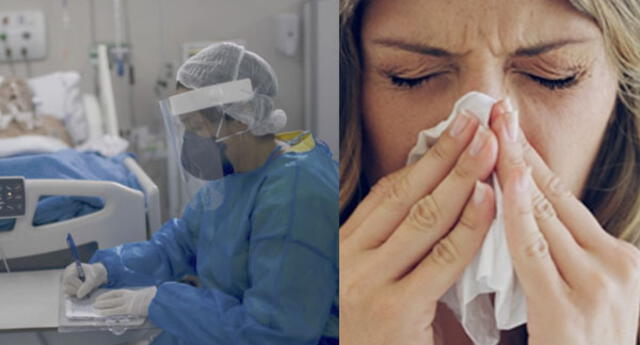 Estudio reveló cuánto tiempo tardará la COVID-19 en convertirse en un resfriado común.