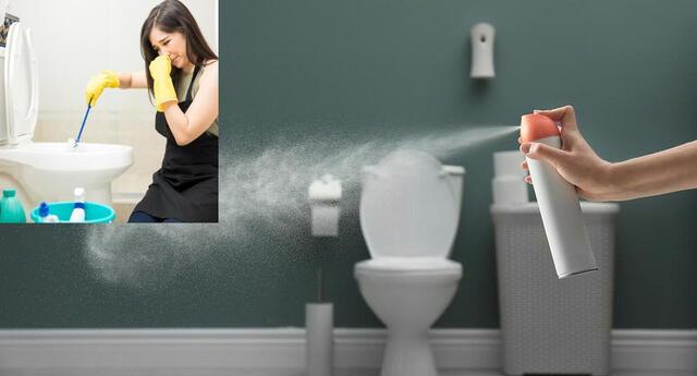 La limpieza continua ayudará a evitar el mal olor.