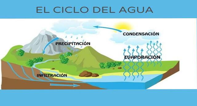 Es importante conocer el ciclo hidrológico para preservar el agua.
