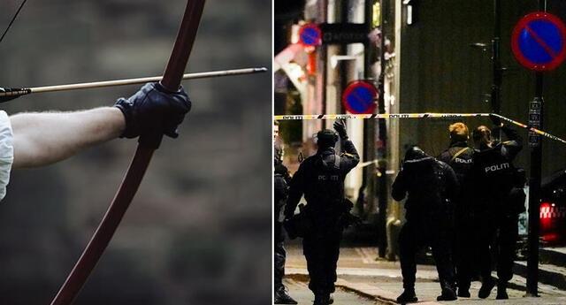 Hombre armado con un arco y flechas mató e hirió a varias personas en Noruega.