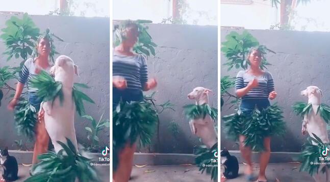 Una mujer tuvo una ingeniosa idea y se cubrió el cuerpo con hojas; sin embargo, lo que llamó la atención fue que tuvo la compañía de su adorable mascota. Foto: captura de TikTok